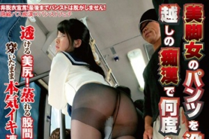 NHDTA-744 Many Times In The Molester Of Black Stockings Over Confiscated Legs Woman Pants